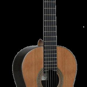 guitarra concierto palosanto