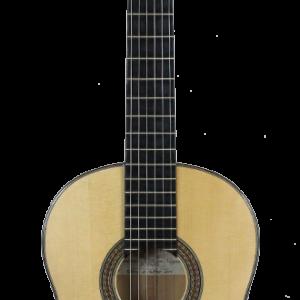 Modelo guitarra flamenca