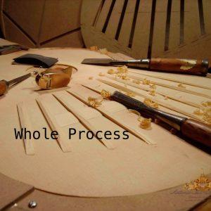 Whole process