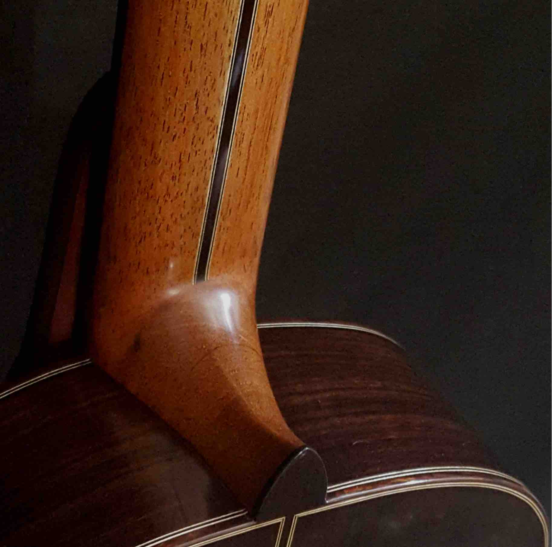 back-guitar-rosewood