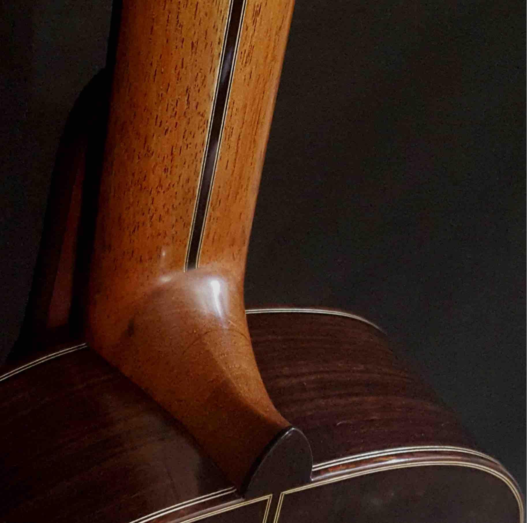 back-guitar-rosewood