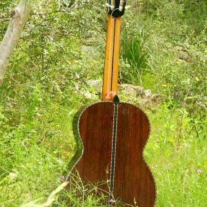 guitar back nature