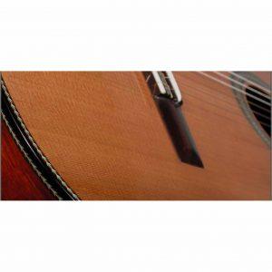 espigas-costados-guitarra