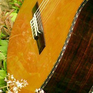Puente guitarra