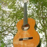 Guitarra desde abajo