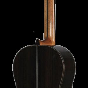 guitarra entera