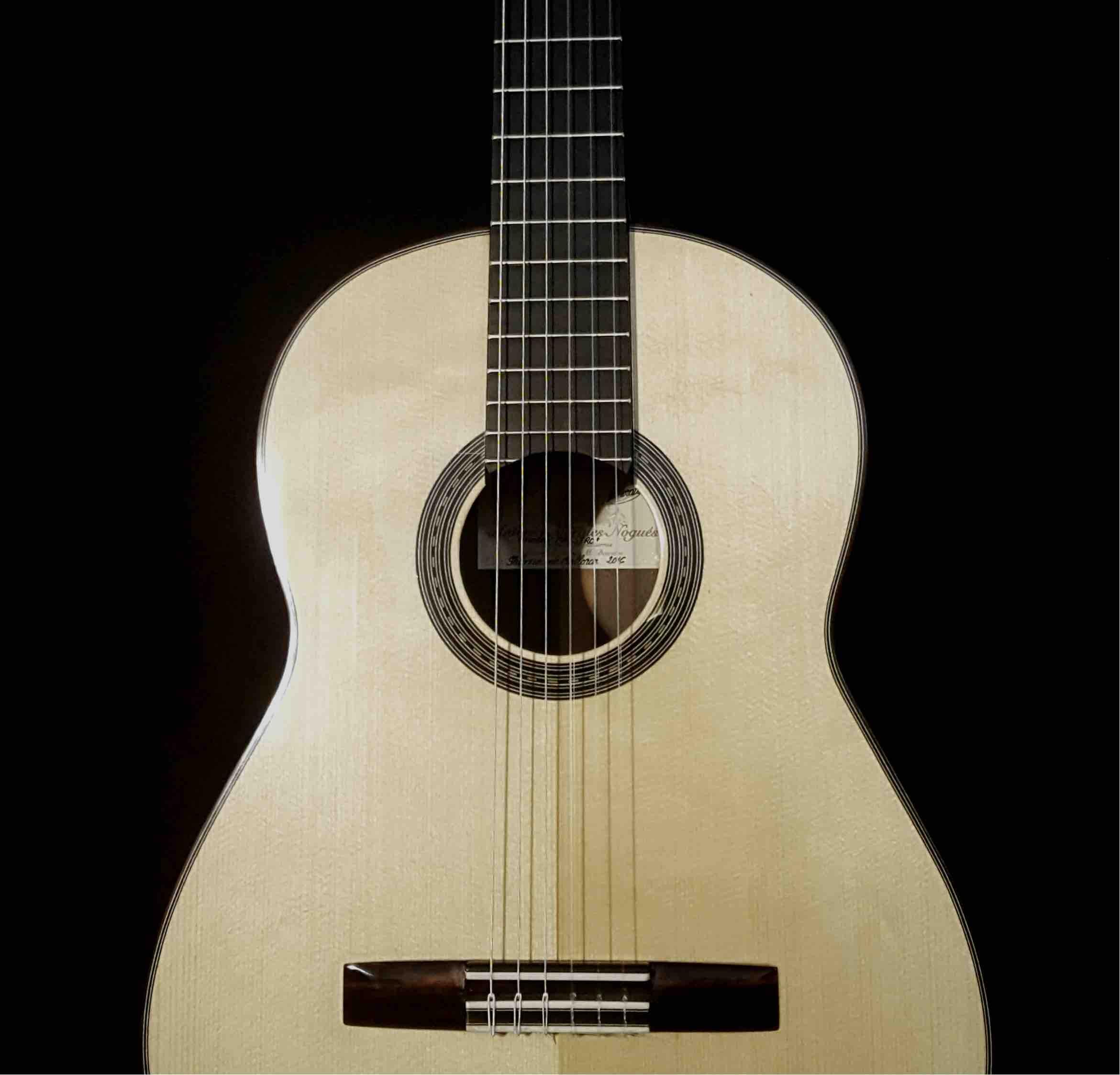guitarra-espanola-pro