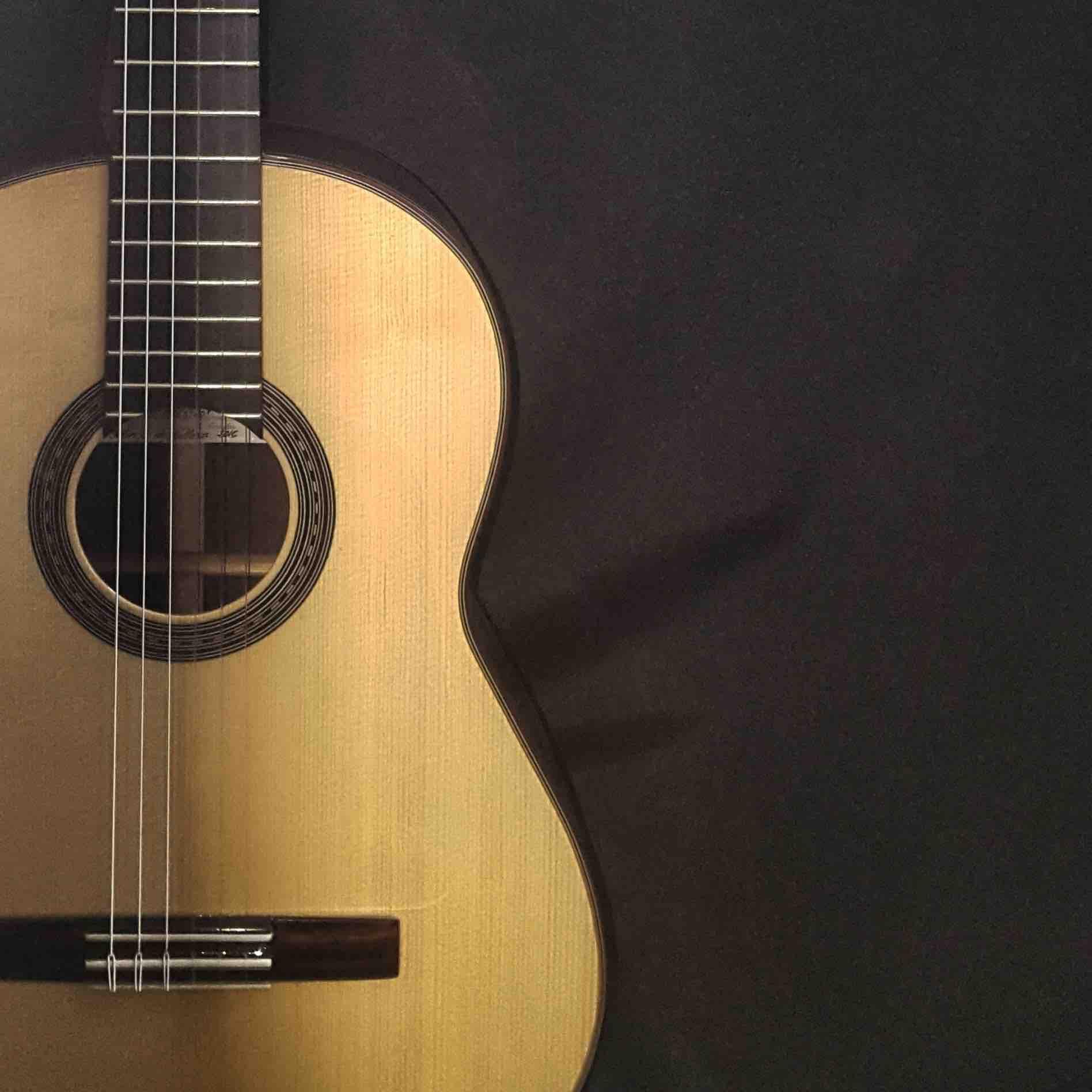 guitarra-flamenca-de-concierto