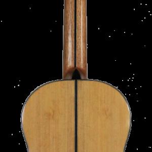 guitarra ligera