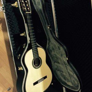 guitarra modelo maestro