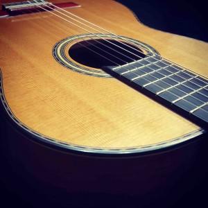 guitarra-modelo-profesional