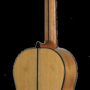 guitarra tradicional