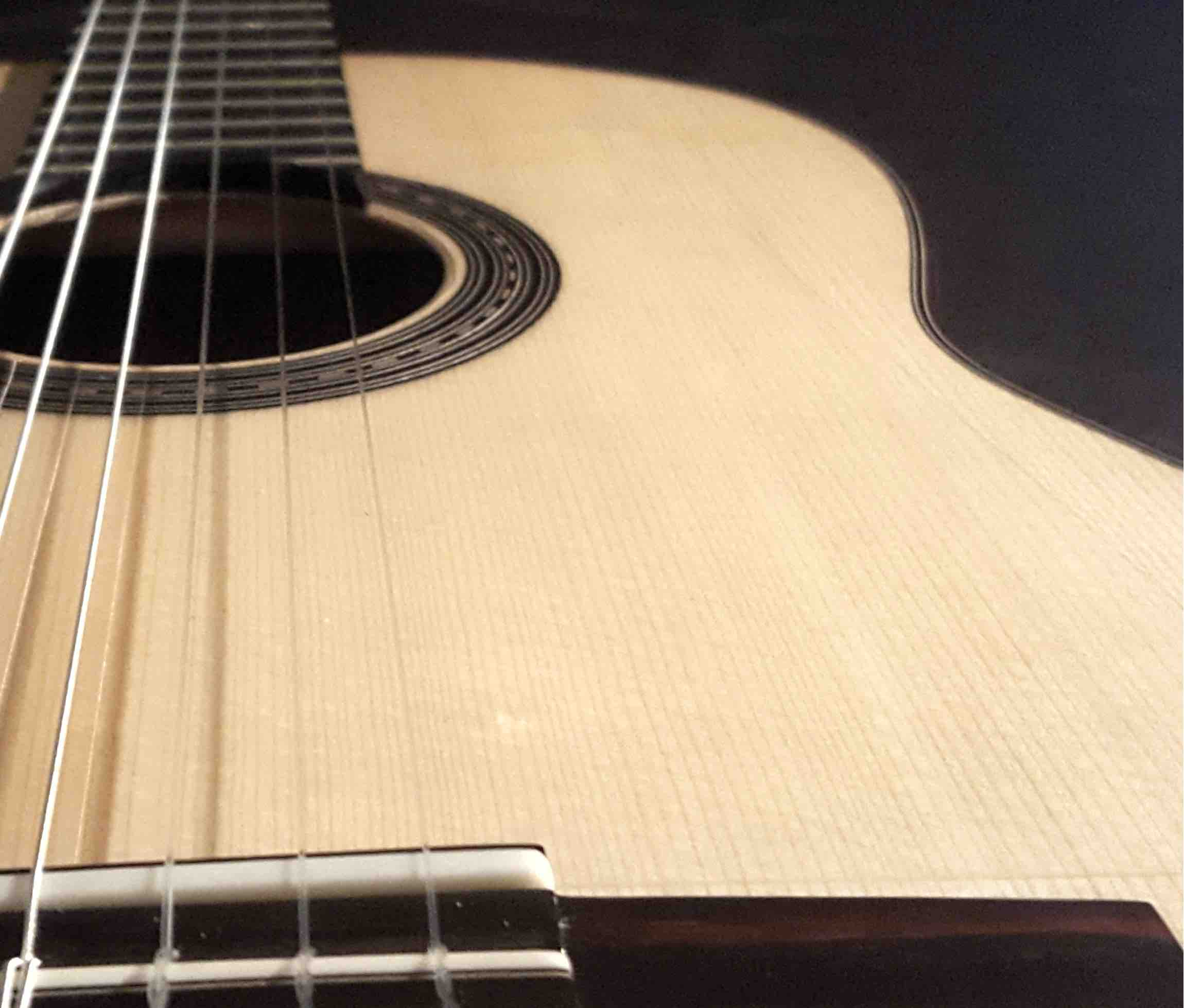 master-guitar