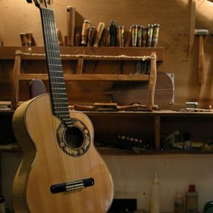 Guitarra original asimétrica