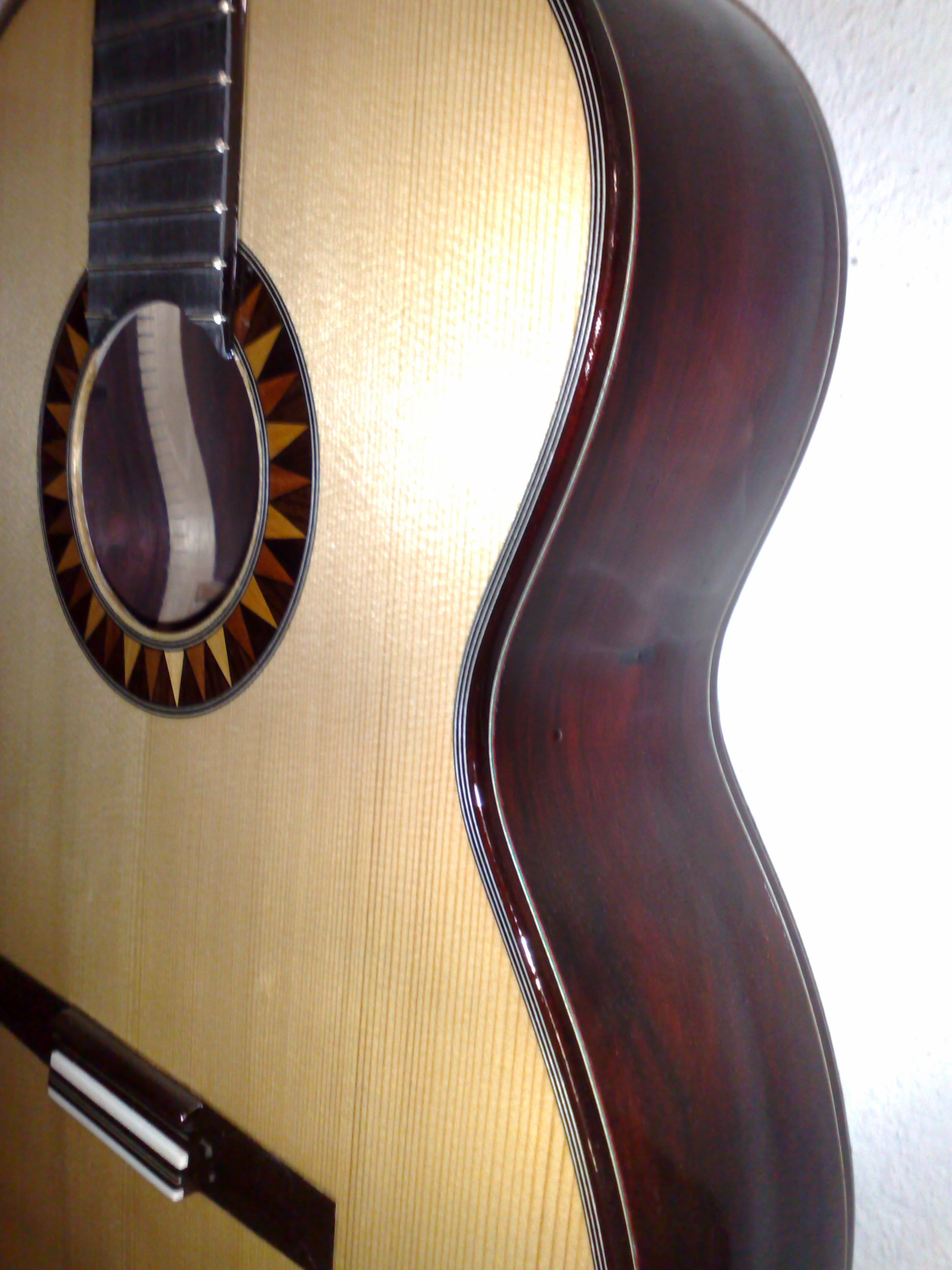 guitarra palosanto