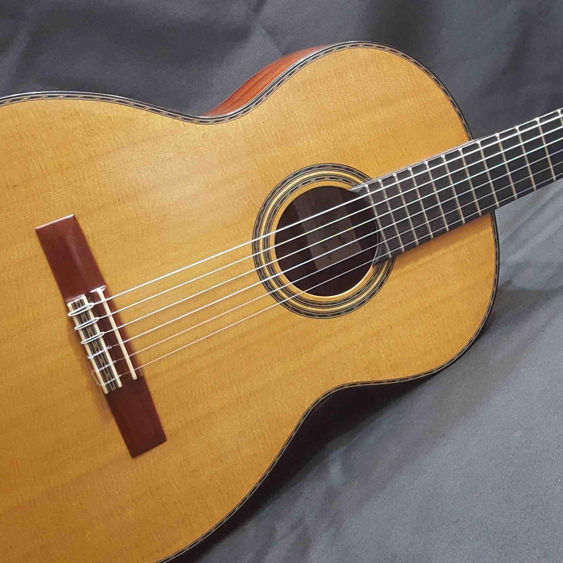 guitarra_clasica_profesional