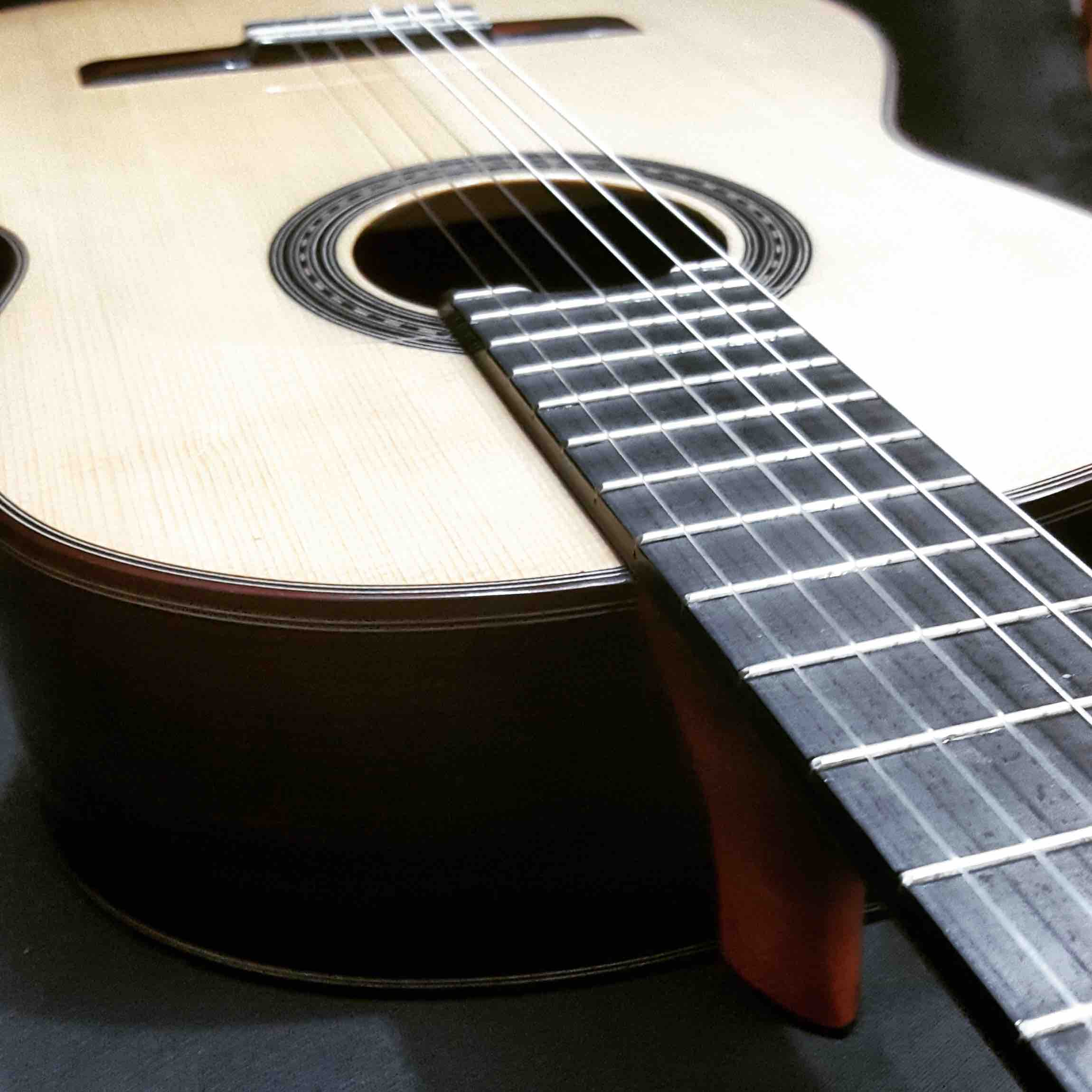 guitarra_profesional