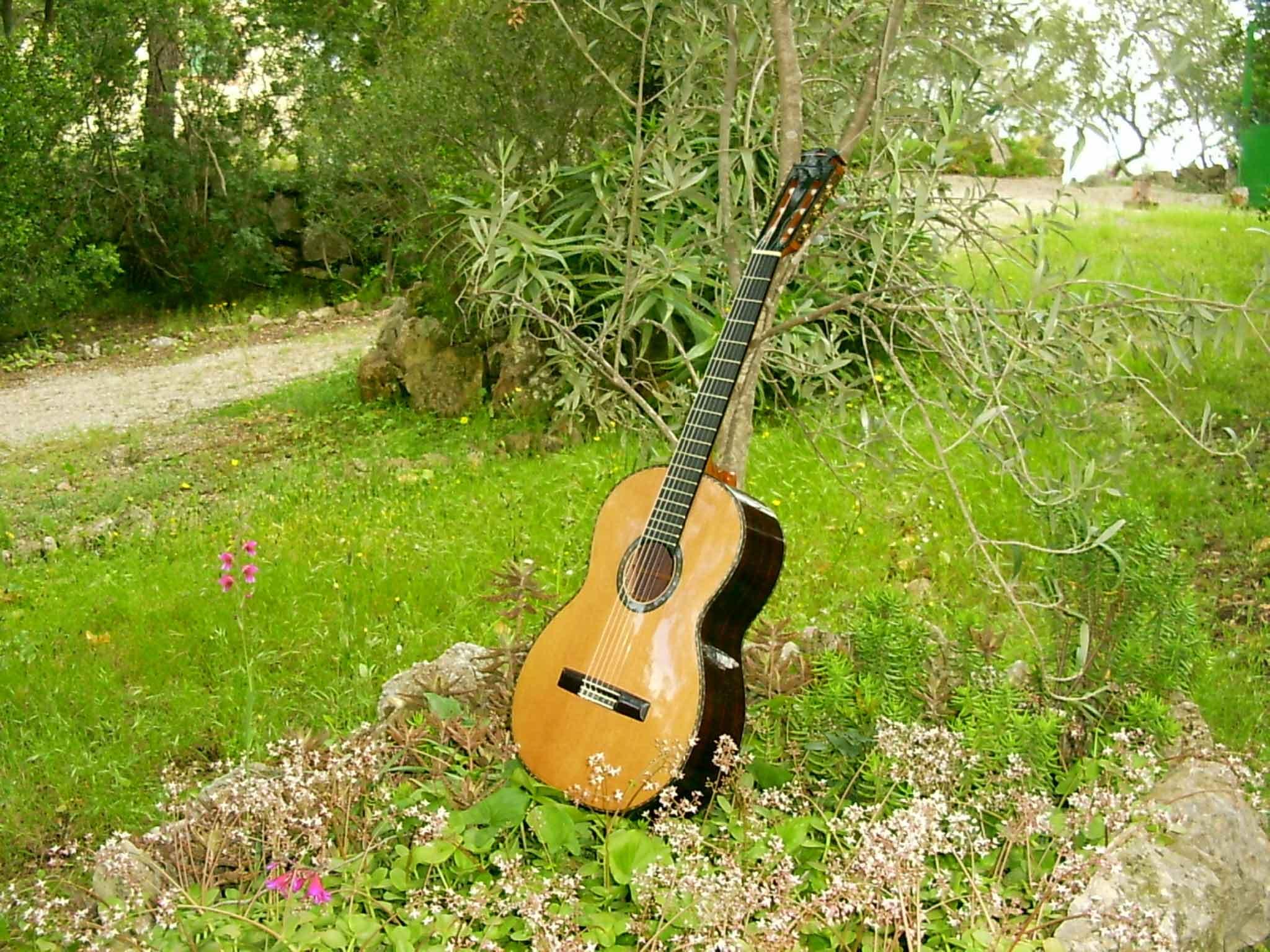 guitarre
