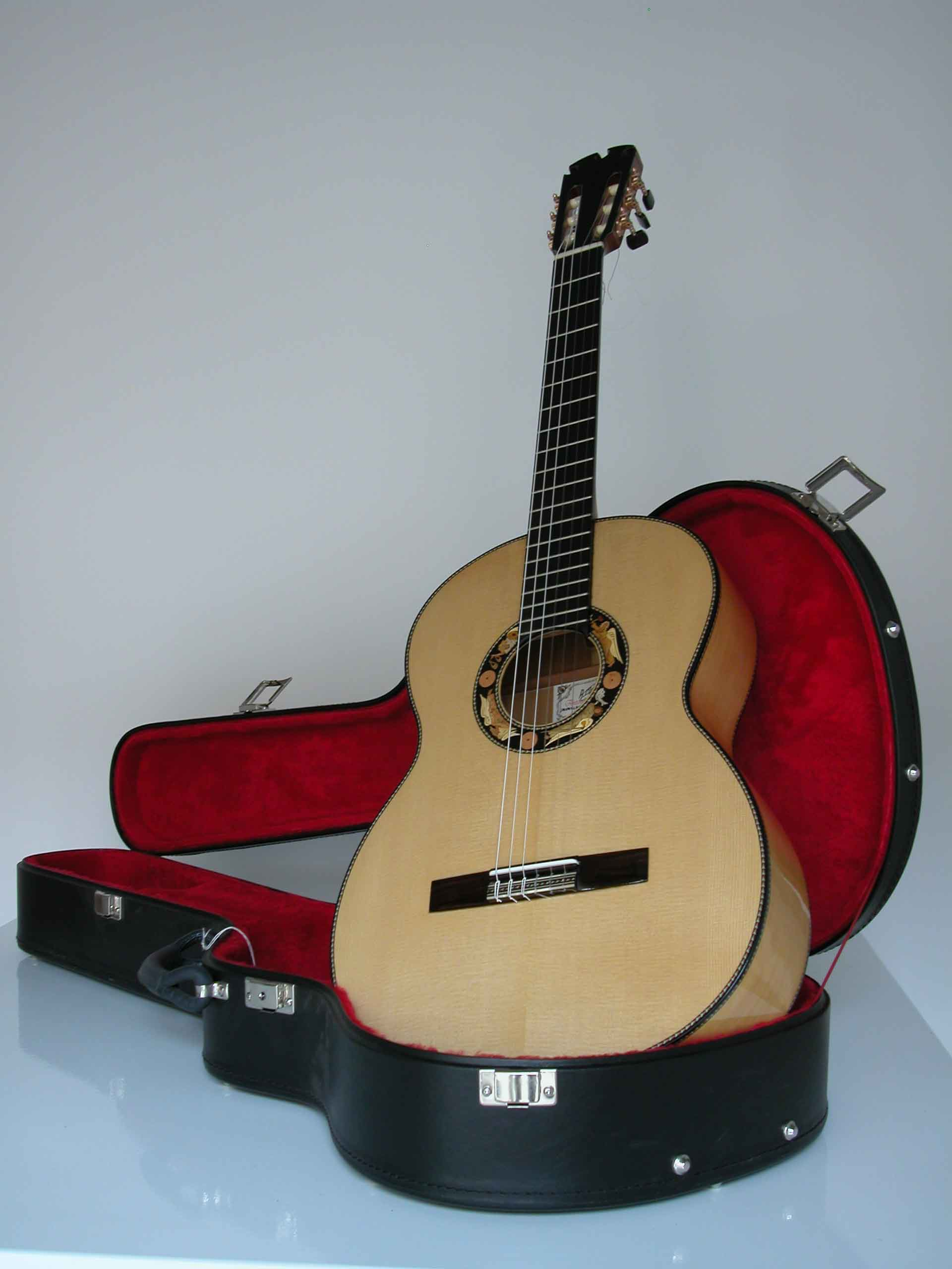 guitarra estuche
