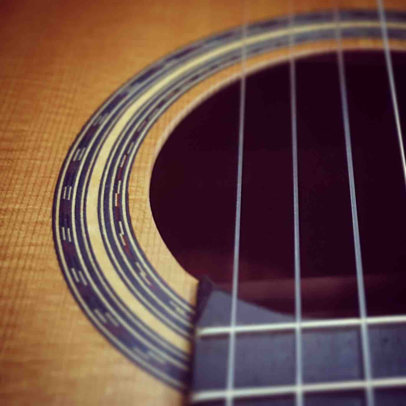 roseta-guitarra
